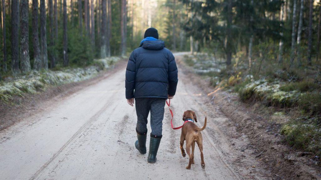 Wyprawa z psem